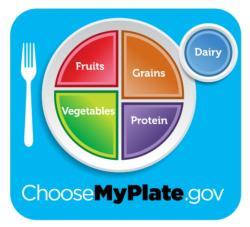 My Plate Diagram
